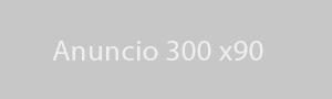 anuncio 300x90